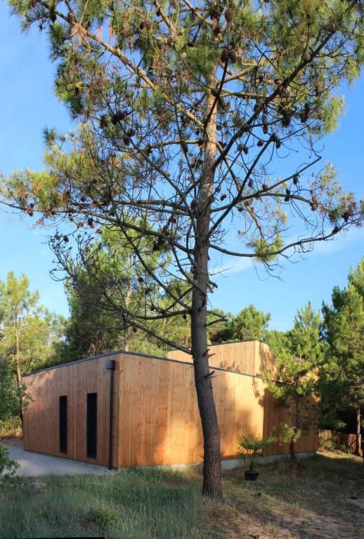 architecture-bois-reportage-projet-bois-2