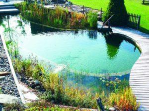 piscine-naturelle-bio