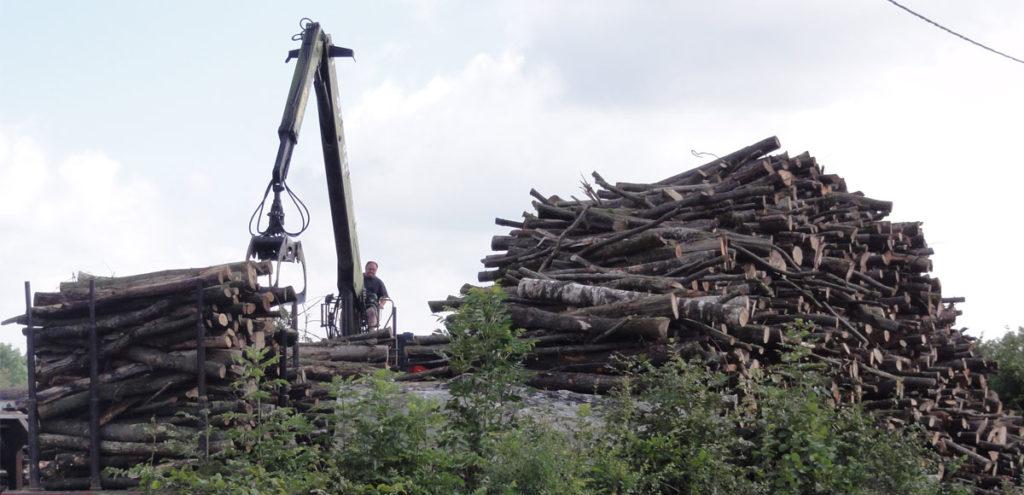 Entreprises filière bois
