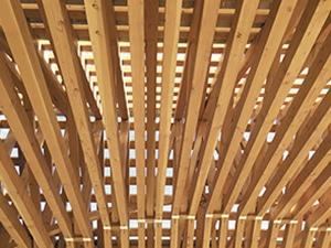 événement le bois dans la ville