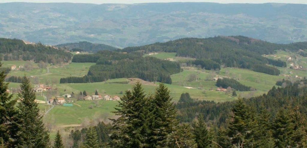 Certification bois territoires Massif central