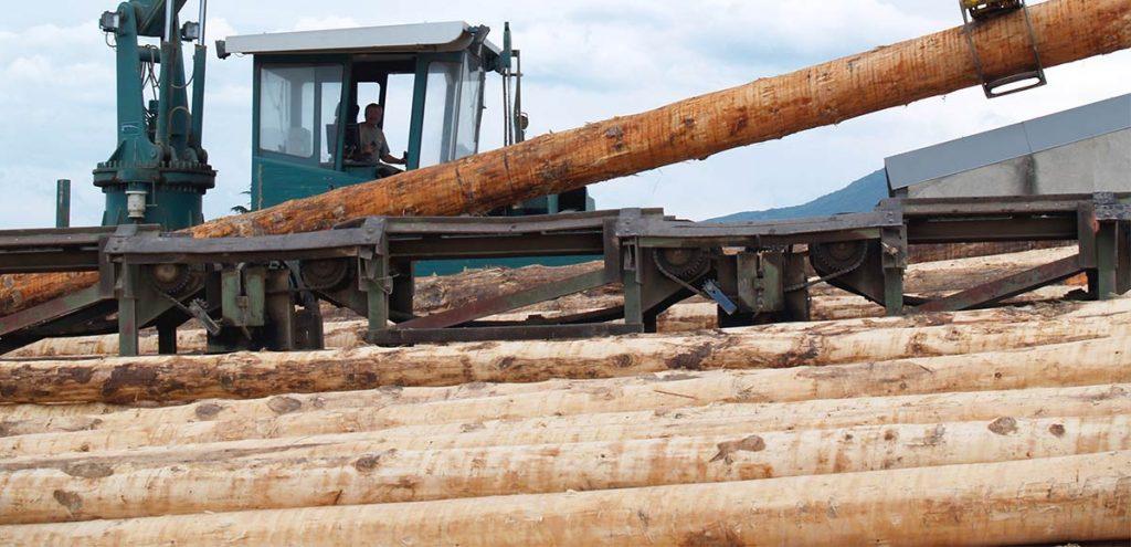 Filière bois Auvergne-Rhône-Alpes