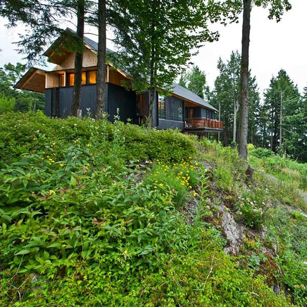 Maison bois neuve - Shim-Sutcliffe Architects