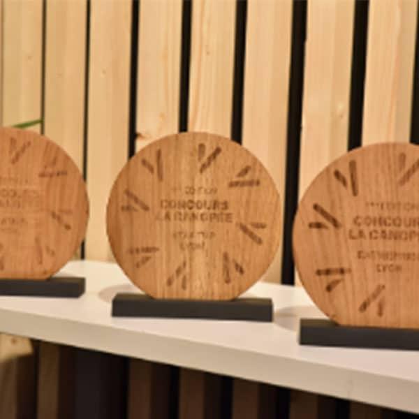 Concours La Canopée Lyon ,projets bois-forêt