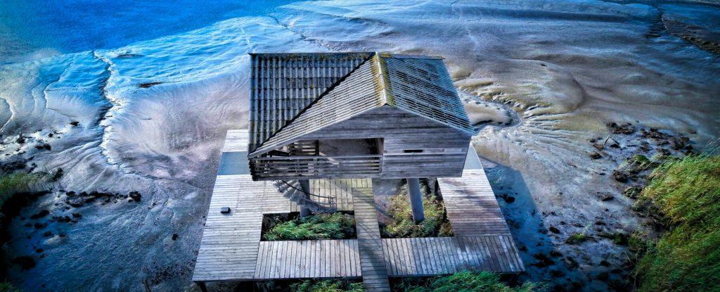maison bois bardage naturel