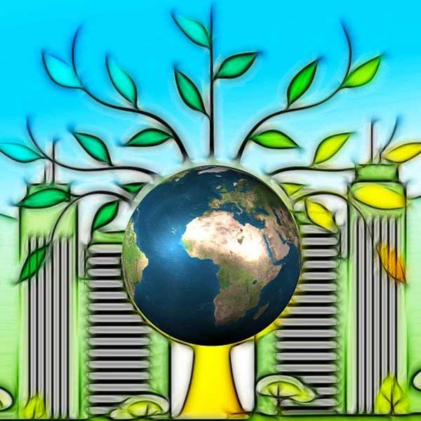 RE2020 batiment ville vert ecologie bois